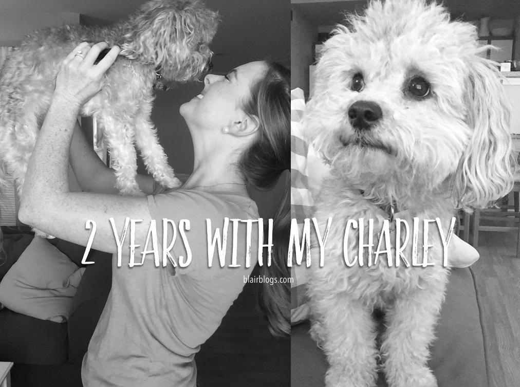 2 Years With My Charley   Blairblogs.com
