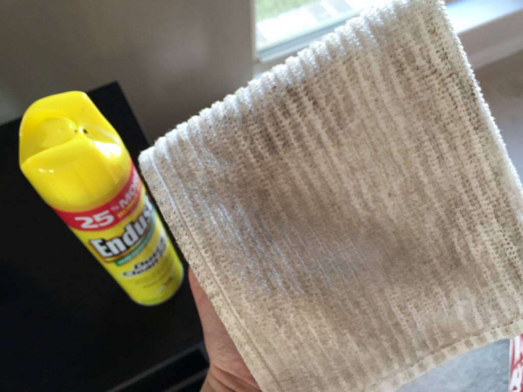 Endust Multi-Surface Dusting Spray | Blair Blogs