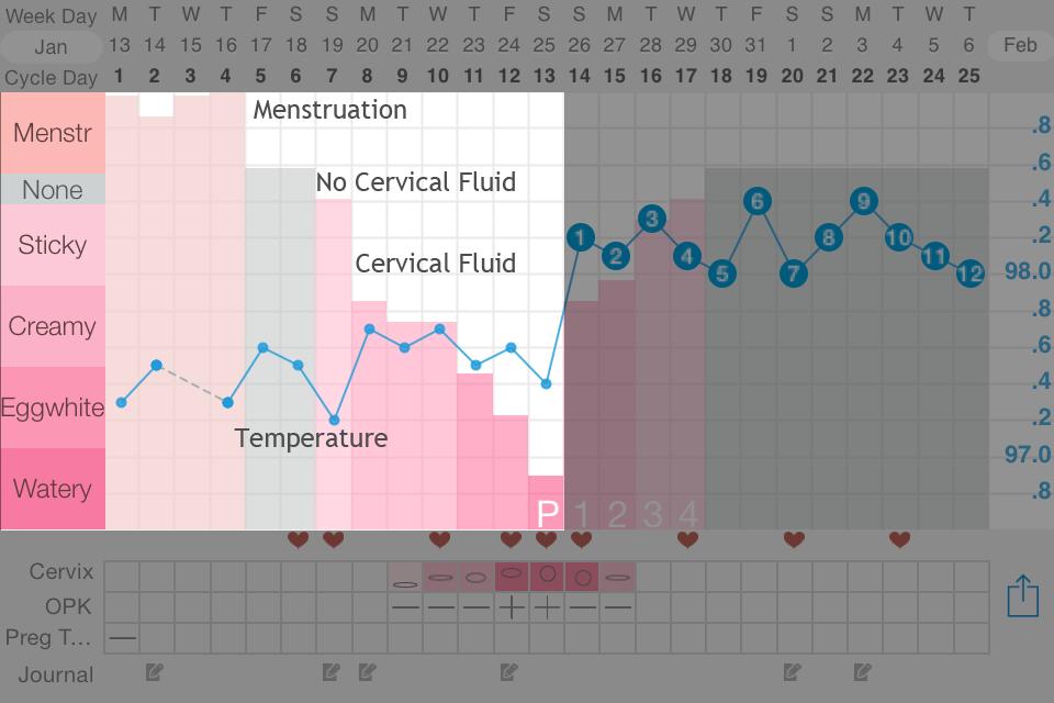 Natural Birth Control: The Fertility Awareness Method, Explained | Kindara | BlairBlogs.com